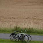 Räder vor Weizen